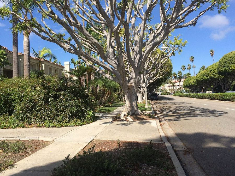 home exchange #1284: USA, California