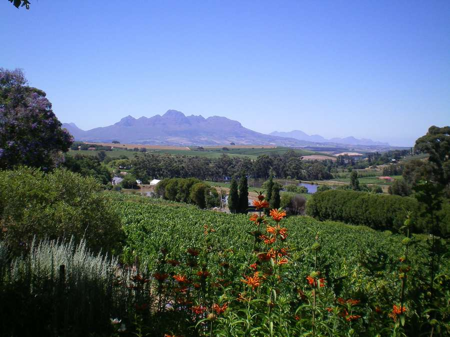 home exchange #1517: South Africa, western cape