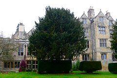 United Kingdom home exchange property #0635